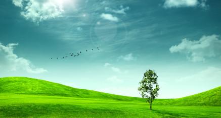 Qualità e ambiente
